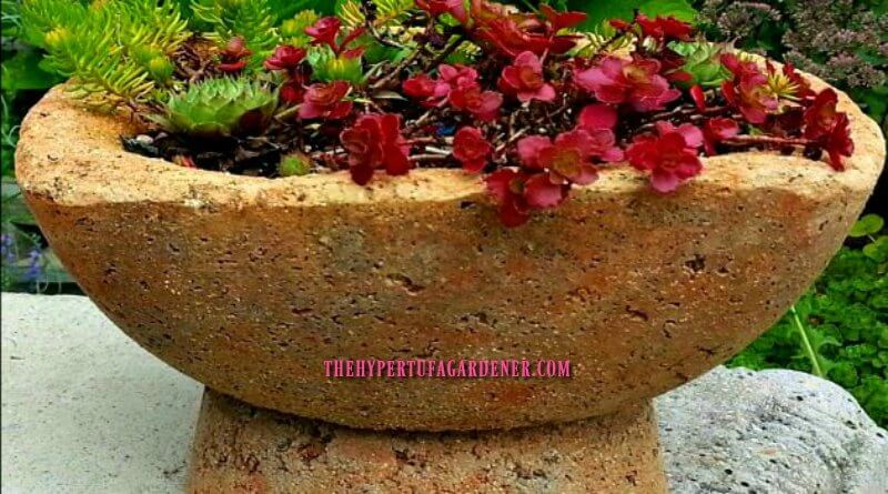 Hypertufa on a Pedestal-The-Hypertufa-Gardener