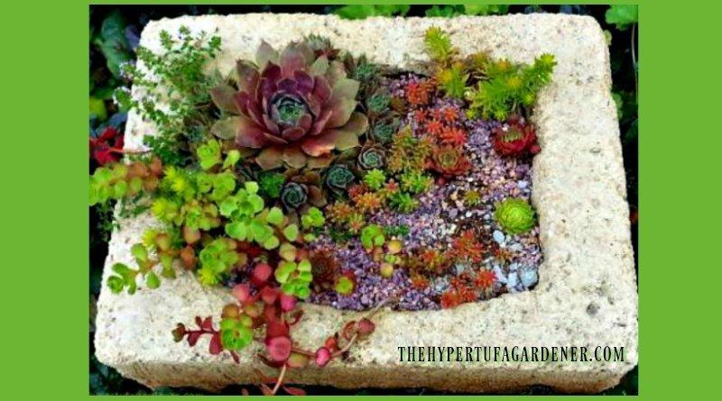 colorful-hypertufa-planters-make-one-yourself