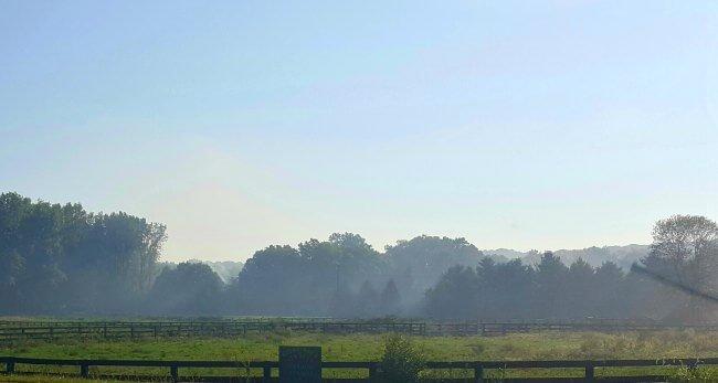 misty-late-summer-morning1
