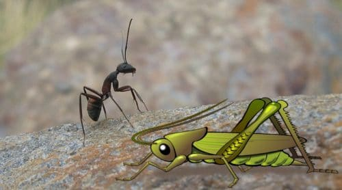 The Ant and The Grasshopper – Excuse Me?