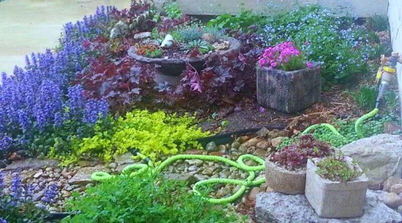front firepit garden - Fire Pit Bowl