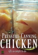 Pressure Canning Chicken - It's so simple even I can do it! and so can you!