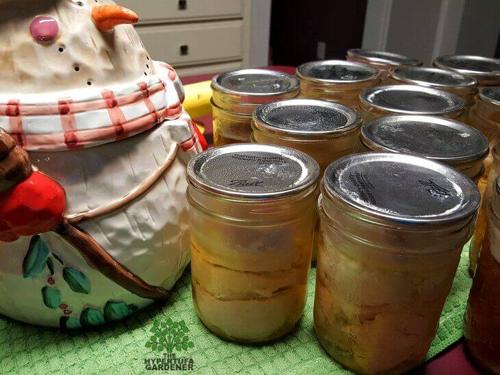 Pressure Canning chicken in winter - It's a great time.