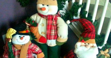 Unpack Those Christmas Decorations! It's Time! - The Hypertufa Gardener