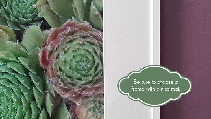 DIY Photo display idea