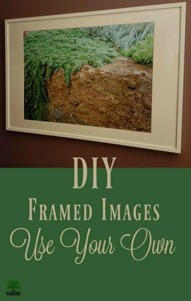 DIY photo display idea from The Hypertufa Gardener