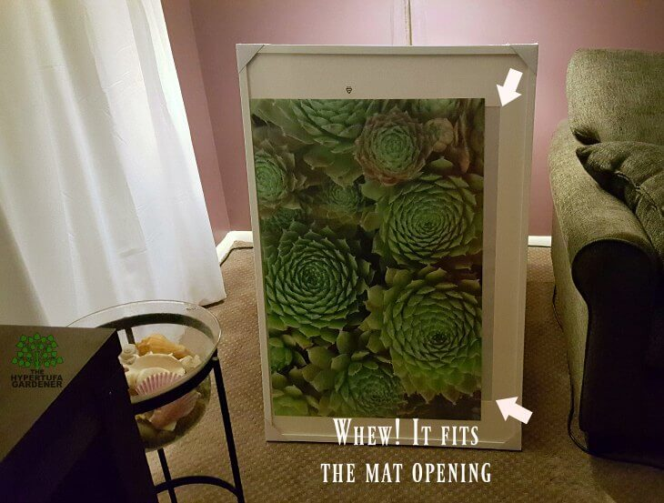 DIY photo display idea - it fits the mat opening 30 inch by 20 inch