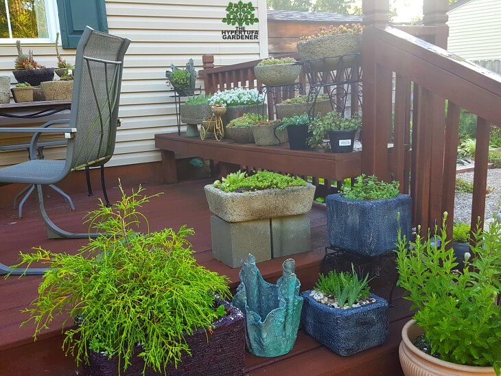 Kims gardens 2016 - Styrofoam planters on deck