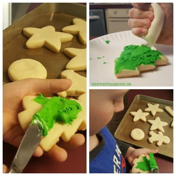 Sugar Cookie That Keeps Its Shape - He works on his design