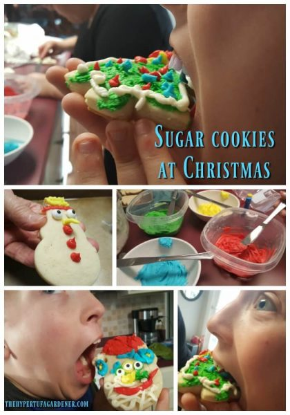 Sugar Cookie That Keeps Its Shape - Taste testing is important(1)
