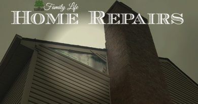It's just a part of Family Life - Home Repairs. They will sneak up on you when you least suspect. And Bam! More bills!