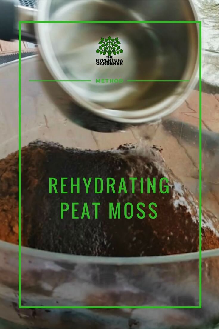 image of peat moss rehydration