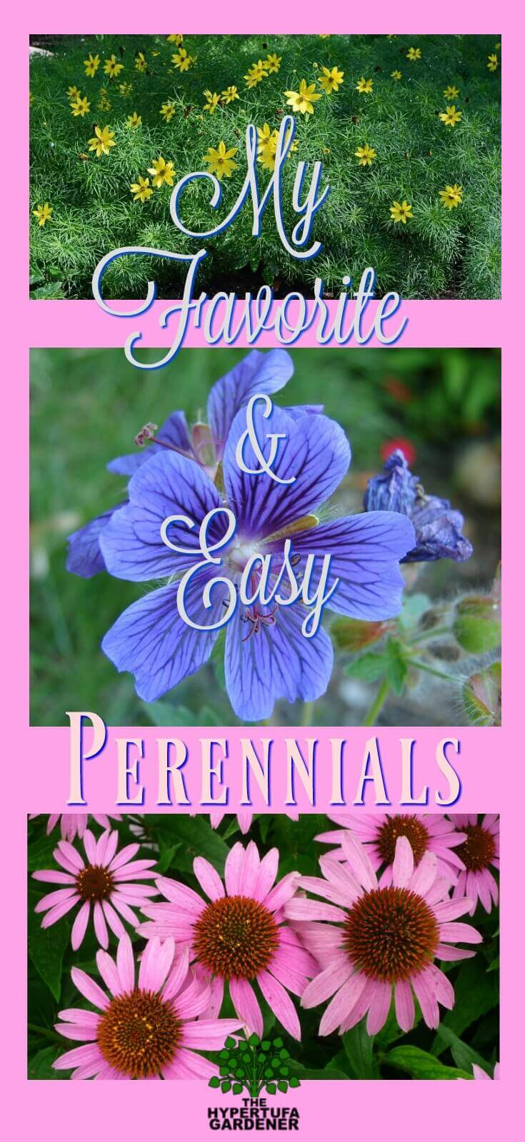 My favorite and easy perennials. These are great in an Ohio garden. Reliable and easy care!