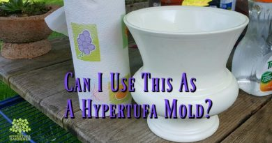 Using Hypertufa Molds - It can be anything