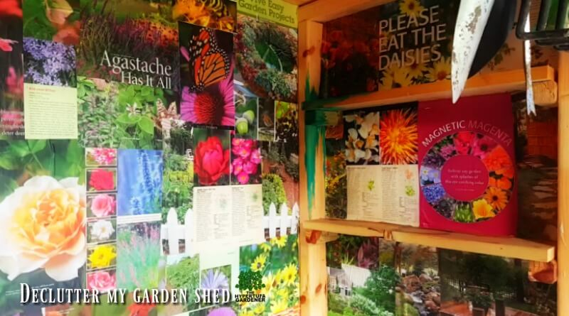 Declutter My Garden Shed - Hot Work in the summer