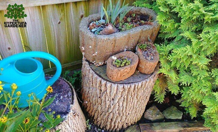 Getting tired of tree stumps in my backyard garden