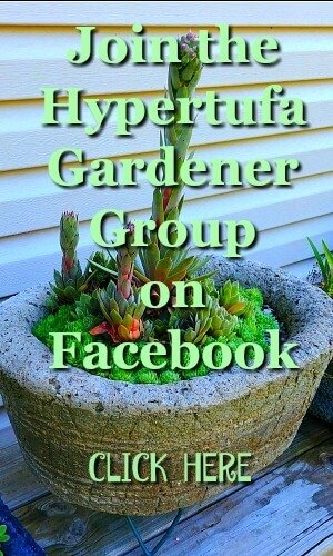 Join the Facebook group for The Hypertufa Gardener