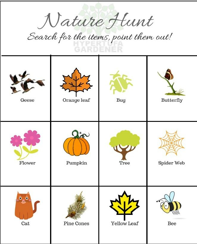 Fall Nature Hunt game for Kids