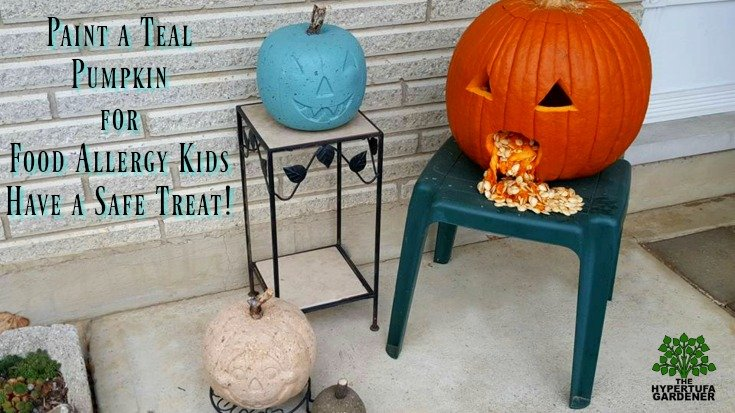 Paint Hypertufa pumpkin teal for Food Allergy.org awareness