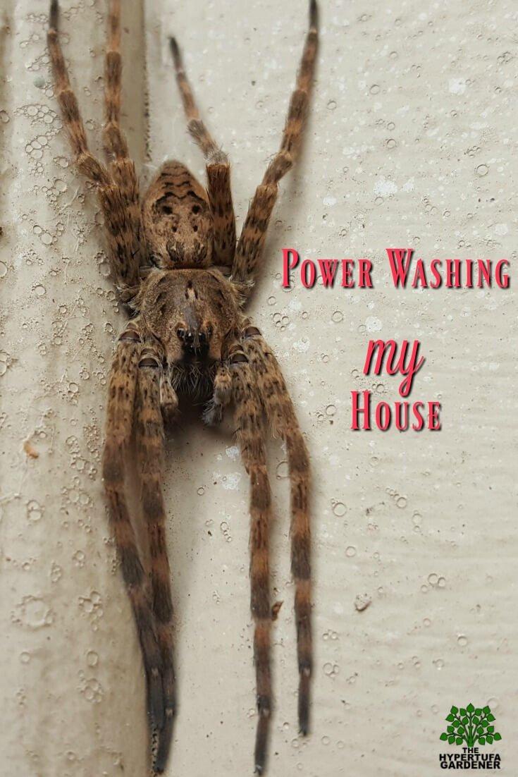 Power Washing My House