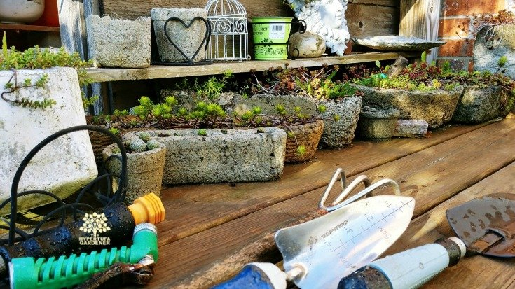 Tools for the Fall garden