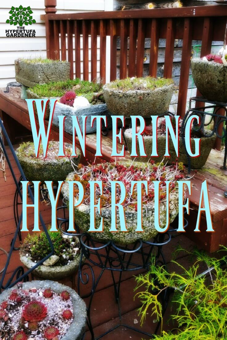 Wintering Hypertufa - Snow is not a problem