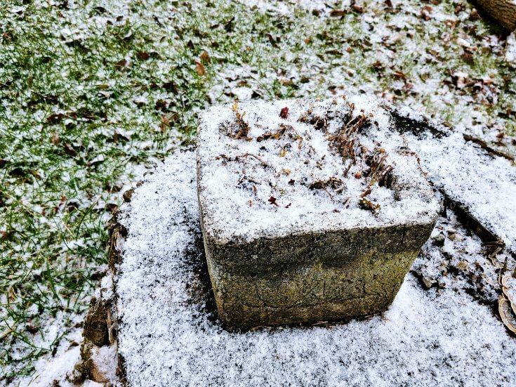 Graveyard moss has gone to sleep - Just let it snow