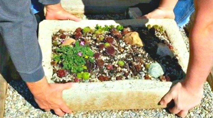 Mixing bin makes a great hypertufa mold