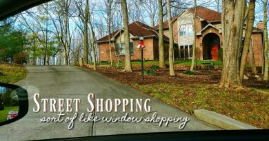 The Home Buying Process starts with street shopping.