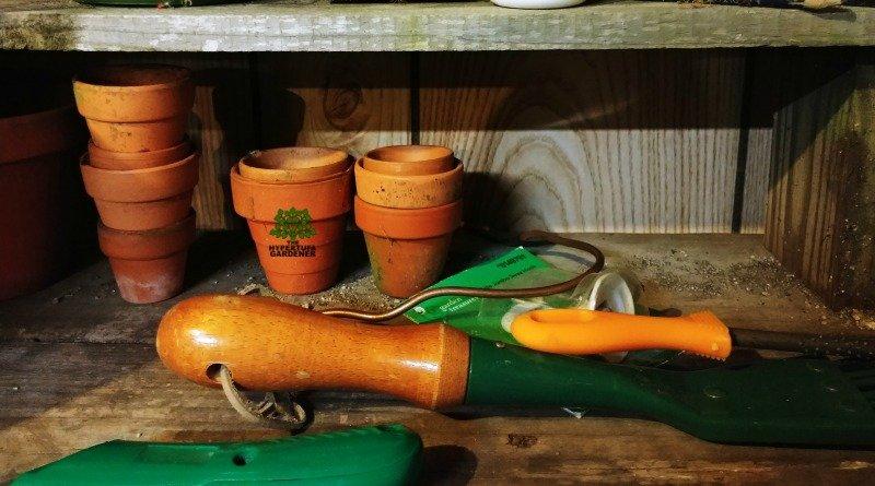 Garden shop in the basement