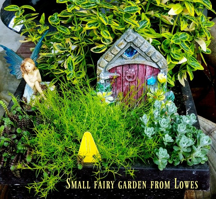 Small fairy garden from lowes - not as imaginative in my opinion