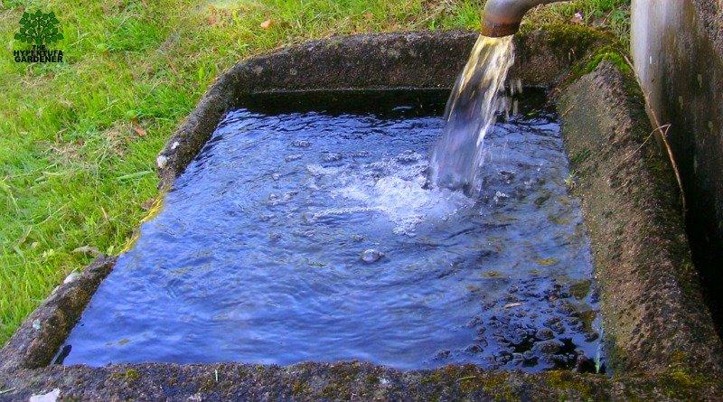 Portland cement - We use it to make hypertufa troughs