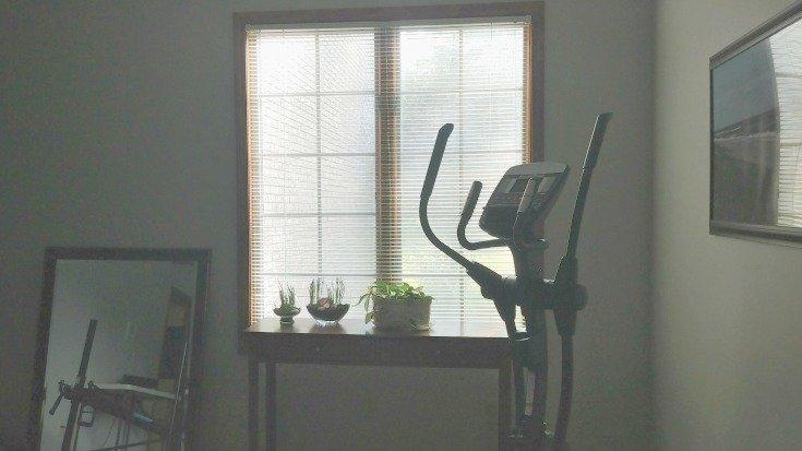 Large window for houseplants