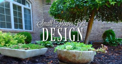 Small flower bed design - I always have to change it up!