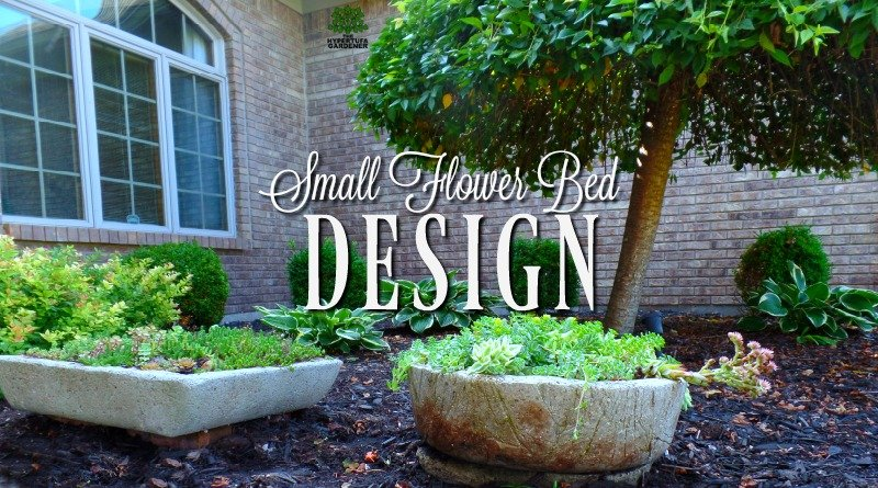 Small Flower Bed Design In Front – You Know I Have To Rearrange!