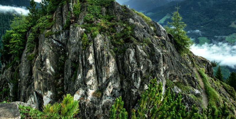 A crevice garden which is a mountain