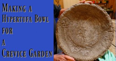 Crevice Garden - I have made a hypertufa bowl so that I can plant one