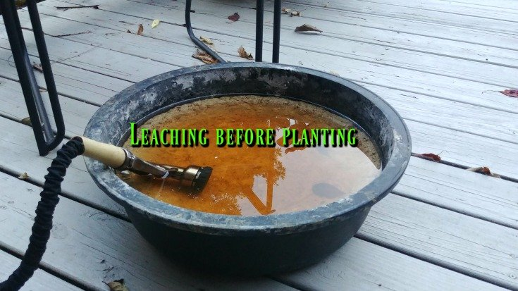 Leaching - How to build a crevice garden