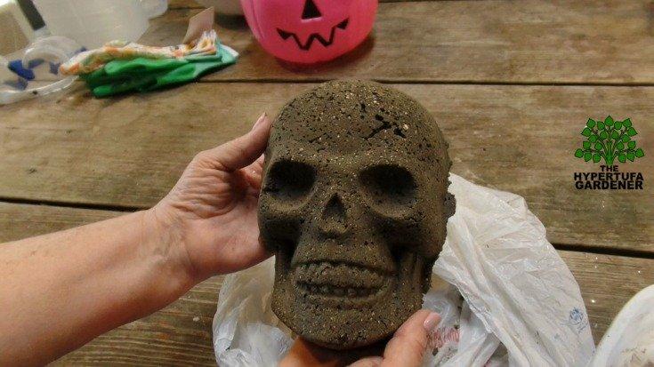 Really looks old - Perfect Halloween skull