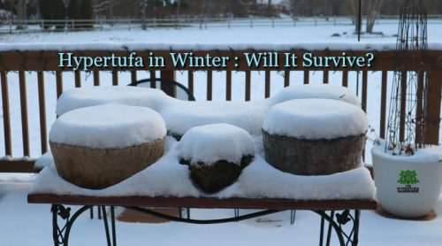 What About Hypertufa In Winter? Can These Pots Survive Snow & Ice?