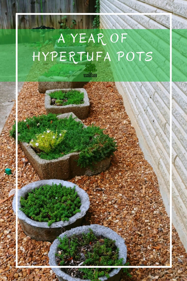 A year of Hypertufa Pots