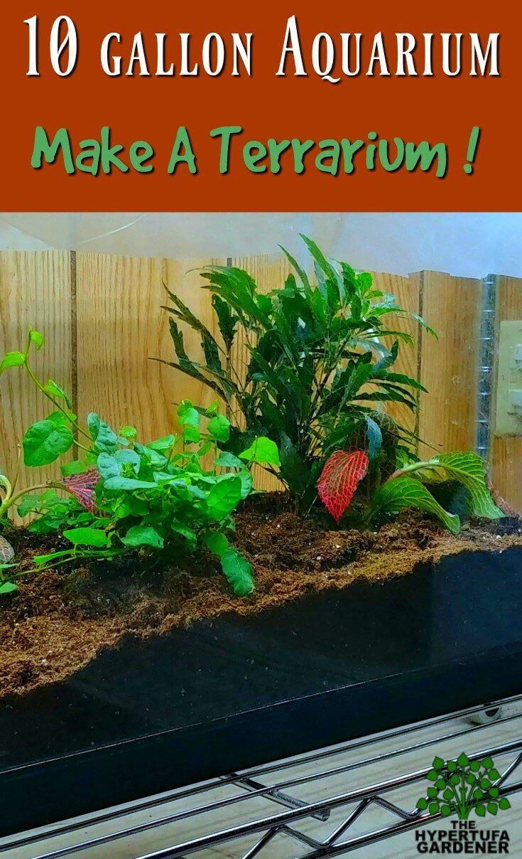 Converting Aquarium to Terrarium - Clean it up and Plant