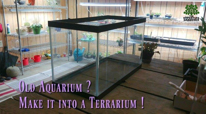 Converting Aquarium to Terrarium