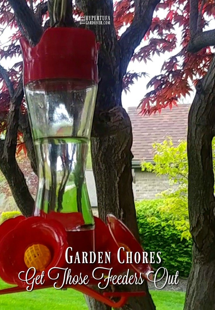 Get Those Feeders Out - Garden Chores