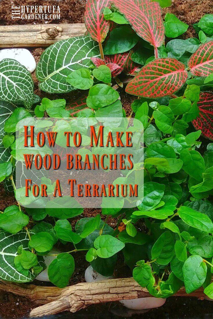 How to Make Terrarium Wood Branches. #terrarium #terrariumdecor