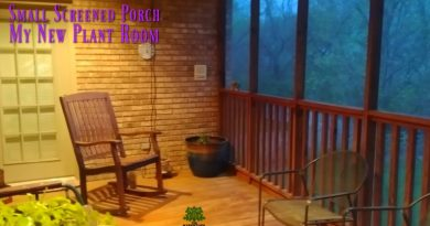 Let's make a new plant room with my small screened porch