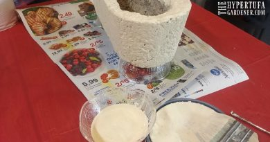 Painting Hypertufa Planters – Renewing An Old Planter