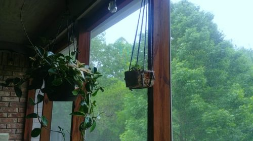 How To Make Simple Plant Hangers For Pennies