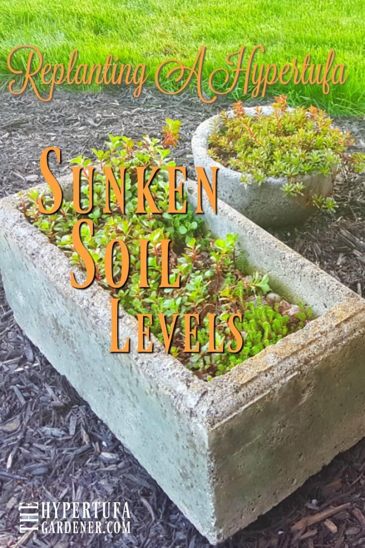 Replanting a hypertufa pot due to sunken soil levels