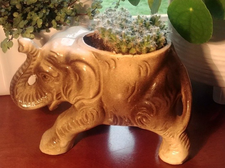 My special vintage planter with no holes drilled